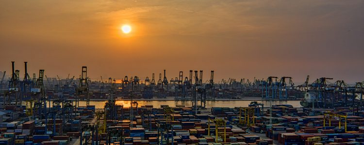 The Top 5 Advantages of using Sea Freight with LTS