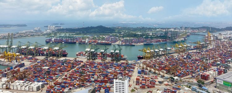 Importing and Exporting – LTS Global Solutions give you their shipper's guide